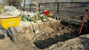 Menggali Lubang Kubur, Meninggal Dunia di Belanda, Kuburan Orang Muslim di Almere Belanda