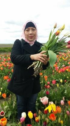 Petik Tulip dari Kebun