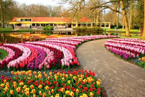 Pic: Keukenhof.nl