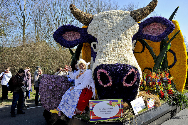 Parade Bunga Tulip di Belanda, Parade Keukenhof, Taman Bunga Tulip, Pawai Bunga