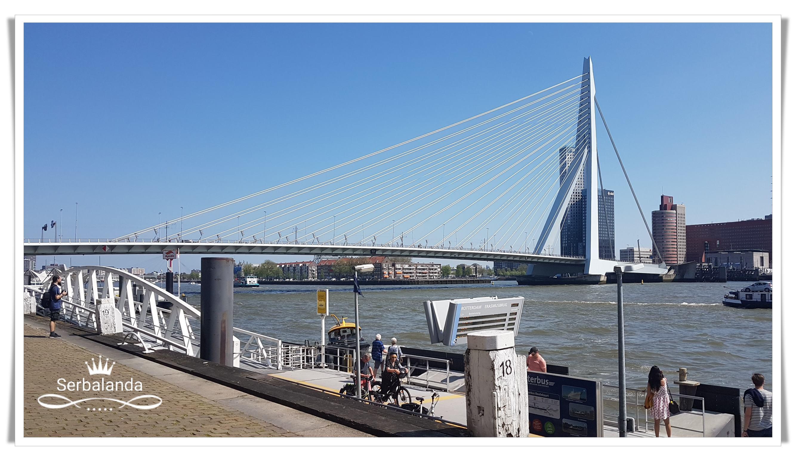 Jembatan Erasmus Rotterdam, salah satu spot di kota pelabuhan Rotterdam.