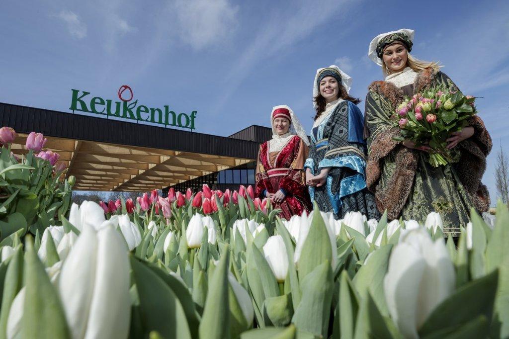 Keukenhof, Taman Tulip di Belanda. Menyenangkan dan merasa adem. Bunga Tulip yang Indah di Belanda.