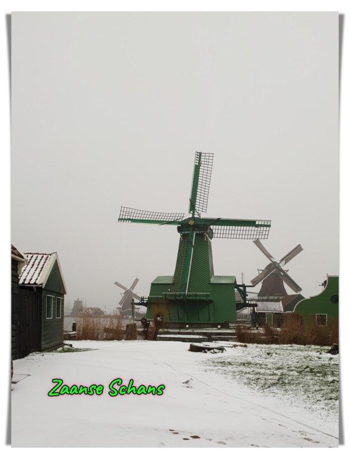 Pemandangan Indah Kincir Angin di Musim Dingin. Salju turun di Belanda. Pemandangan Indah Musim Salju di Belanda. Kincir Penggergaji Kayu. Batang-batang pohon.